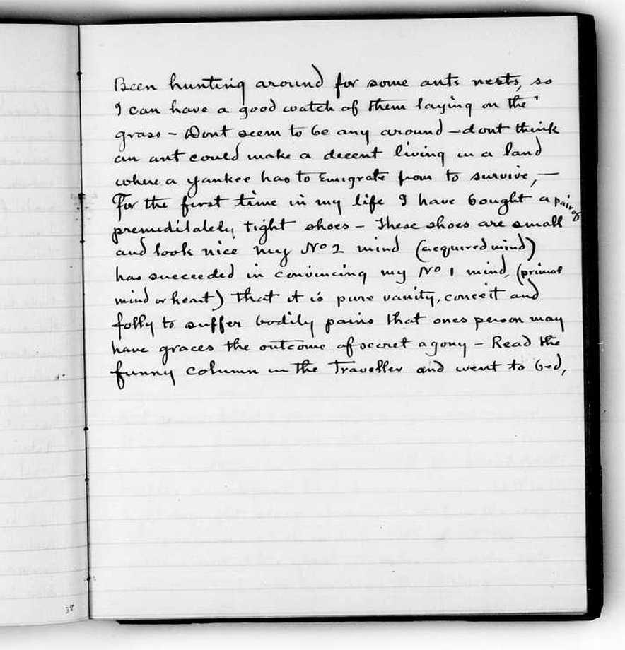 The Diary of Thomas Edison